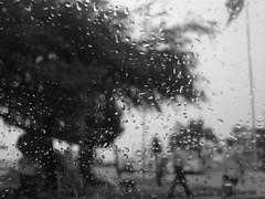 Why does it always rain on me? (Anitah) Tags: blackandwhite bw glass car vidro pb gotas raindrops carro pretoebranco anitah anages