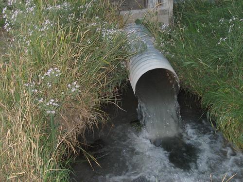 Irrigation... I think