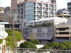 Urban Greenery (sitharus) Tags: trees newzealand urban green raw wellington e300 civicsquare