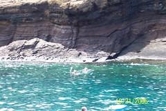 Snorkeling at Molokini (rwilliams3) Tags: trip snorkel mauihawaii