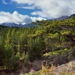 Greens and Blues (Banff National Park) thumbnail