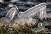 2018-03 Echt ijskoud met aanvriezende oevers bij Stad aan 't Haringvliet/NL (Meteo Hellevoetsluis) Tags: 0318 2018 aboutpixels almanak goereeoverflakkee haringvliet holland lenteseizoen mnd03 nikond7200 nl nederland netherlands nikon specials springseason stadaantharingvliet zuidholland algemeen appliedart art binnenwater border collecties eau forecast fotografie freezing freezingcold freshwater frost geografie geography ice ijs kunst landscape landschap maart march meteo meteorologie meteorology nature natuur oever photography temperature temperatuur toegepastekunst vorst vrieskou water weather weer weerbericht almanak20180318