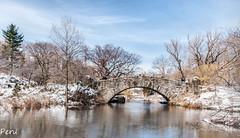 Puente de Central Park (Perurena) Tags: puente brigde piedra stone lago lake agua water paisaje landscape arboles trees naturaleza parque park reflejo reflection centralpark nuevayork usa