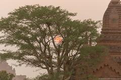 Myanmar-20180324-1376 (ShaneAndRobbie) Tags: mandalayregion myanmarburma mm myanmar burma bagan pagoda temple baganarchaeologicalzone baz sulmani sunset