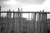 seaside (Philip@Tamsui) Tags: tamsui 淡水 台北 新北市 台灣 sony a7ii contax sonnar90mm sonnar blackandwhite bw monochrome 黑白 seaside seashore 海邊 沙灘 沙崙