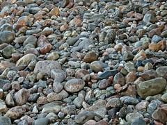 Steine am Binzer Steinstrand (lt_paris) Tags: urlaubinbinz2018 rügen meer ostsee steinstrand binz steine