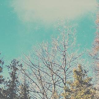 Taking a few liberties with the sky. 78/365. #onmymorningwalk #editingfun