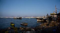 Puerto Coquimbo - Coquimbo (Isaak Espincar) Tags: mar chile coquimbo punta de choros delfines ballenas rocas barcos