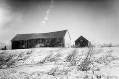 180228-01 Dans les champs (clamato39) Tags: rural barn grange champ field noiretblanc blackandwhite monochrome bw neige snow hiver winter beauce provincedequébec québec canada