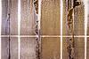 SFMOMA (dalecruse) Tags: sanfranciscomuseumofmodernart san francisco museum modern art sanfrancisco california unitedstates united states usa america downtown