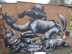 Roa graffiti, Bethnal Green (duncan) Tags: graffiti bethnalgreen roa