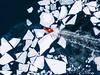 plowing through (miemo) Tags: balticsea dji mavic mavicpro abstract aerial boat drone europe finland frozen helsinki ice nature sea ship snow suomenlinna water winter uusimaa fi