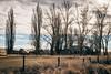 The Mohler Rubble (Pedalhead'71) Tags: mohler lincolncounty washington abandoned house farm homestead