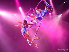 CUR_7936 copie (jeanfrancoislaforge) Tags: euphoria cast dance celebrity eclipse nikon d850 purple
