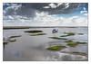 Alone... (Joao de Barros) Tags: joão barros boat nautical river sado portugal