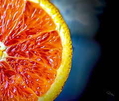 hold it together (Vanessa wuz here) Tags: 90mm macro orange fruit vanessassweetspot macromadness vivid negativespace circles abstract copyrightvanessabartosek
