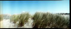 Horizon 007 (romain@pola620) Tags: lomo lomography lomo800 lomohorizon 800 800iso 35 35mm panoramique pano argentique analog analogue analogique film pellicule sea mr merdunord northsea north nord sun ciel soleil sky blue bleu plage sand sable dune