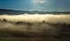 Valley of Clouds (Rita Eberle-Wessner) Tags: landschaft landscape nebel fog hügel hills berge mountains wald forest tal valley bäume trees obstbäume wiese meadow weide pasture gras grass kühe cows zaun zäune fence fences rural ländlich