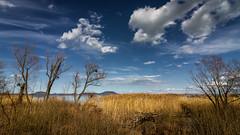 (zedspics) Tags: soósöböl balatongyörök magyarország hungary hongarije balaton landscape nature sky clouds cloudy zedspics 1803