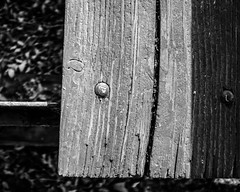 DSCF0011 (agianelo) Tags: wood bench weathered monochrome bw blackandwhite abstract texture shadow