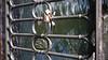 21-03-18 008 (Jusotil_1943) Tags: 210318 candados barandilla hierro metal agua