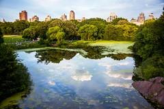 Shakespeare Garden: una romantica passeggia a Central Park tra fiori e poesia (Cudriec) Tags: centralpark giardini newyork shakespearegarden statiuniti vacanza viaggiare viaggio williamshakespeare
