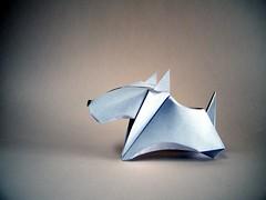 Bull Terrier - Madiyar Amerkeshev (Rui.Roda) Tags: origami papiroflexia papierfalten dog chien perro cão cachorro bull terrier madiyar amerkeshev