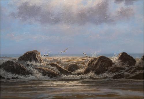 DSC_5208.Gulls,  Hua Hin