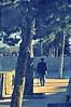Bahar Yürüyüşü (Hüseyin Başaoğlu 3) Tags: nikond300s volna950mmf28 hüseyinbaşaoğlu huseyinbasaoglu biga pegai çanakkale dardanel turkei turquie türkiye