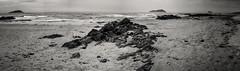 20180414-0097-Pano-Edit (www.cjo.info) Tags: bw bassrock craigleithisland eastlothian europe europeanunion lambisland m43 m43mount microfourthirds nikcollection northberwick olympus olympusmzuikodigital25mmf18 olympuspenf scotland silverefexpro silverefexpro2 unitedkingdom westerneurope yellowcraigs beach blackwhite blackandwhite coast coastal digital island landscape monochrome ocean panorama rocks sand sea seascape stichedpanorama water
