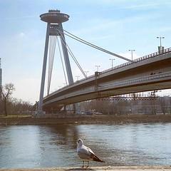 Ponte conhecida como UFO, sua plataforma de observação parece uma nave espacial... 👽 (jpcamolez) Tags: ponte conhecida como ufo sua plataforma de observação parece uma nave espacial 👽