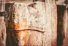 DSC00838 (mortelette.david) Tags: zeiss planar loxia250 50mmf2 bois wood rouille rust bokeh dof profondeurdechamp flou blur extérieur sony sonya7ii sonyilce7m2 fer iron weatheredwood deadwood