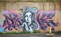 Medusa - Drake (Mr Baggins) Tags: graffiti streetart johannesburg jozi brixton drake