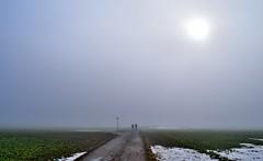 Sunshine, Snow and Mist (peterslaing) Tags: mist sunshine pentlands glencorse scotland path track moody
