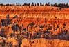Red Hoodoos and Sandstone Cliffs in Golden Hour Light, Bryce Canyon Utah (PhotosToArtByMike) Tags: sunrisepoint brycecanyonnationalpark redhoodoos hoodoos goldenhour dawn rockspires brycecanyon utah ut redsandstonepinnacles bryce limestone erosion scenic canyon landscape