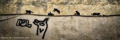_DSC1353_DR_v2 (Pascal Rey Photographies) Tags: streetart street inthestreets walls walldrawings wallpaintings lyon aruba abw lugdunum rhônealpes rhônevalley rhône valléedurhône auvergnerhônealpes croixrousse xrousse arturbain art artcontemporain artabstrait artgraphique artmoderne urbanart urbanphotography urbaines urbain urbaine urbex graffitis graffs graffik graffiti tags stencils stencil papiercollé pastedpaper popart pop pochoirs writinonthewall écritsurlemur pascalrey photographiecontemporaine photos photographie photography photograffik photographiedigitale photographienumérique photographieurbaine pascalreyphotographies nikon d700 aurora aurorahdr luminar