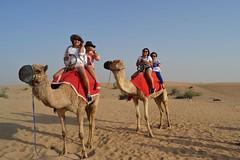 Desert Safari Dubai 65 AED WhatsApp +971552337784 www.tourtodubai.ae #DesertSafari #safari #Dubaisafari #safariadventure #reddunesafari #arabiansafari #eveningsafari #morningsafari #dunebashing #adventure #safaridubai #dubaiadventure (dubai travels) Tags: desert safari dubai 65 aed whatsapp 971552337784 wwwtourtodubaiae desertsafari dubaisafari safariadventure reddunesafari arabiansafari eveningsafari morningsafari dunebashing adventure safaridubai dubaiadventure