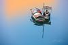 _MG_4463.1213 Relax Fishing Boats (HUONGBEO PHOTO) Tags: cầulongbiên soibóng sônghồng thuyềnđánhcá dinhvanhuong huongbeophoto photography colorful peaceful reflection fishingboats boats outdoor