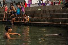 India 2017-101-3 (anuradhadeacon-varma) Tags: madhyapradesh narmadariver narmada marblerocks steps riverbathing swimming 2017 india jabalpur india2017