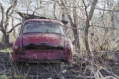 Forgotten car (Analog World Thru My Lenses) Tags: nikonfa sigma2470mmf28 fujicolor200 january 2018 syrena forgotten abandoned classiccars car oldtimer vintage warszawa warsaw explore