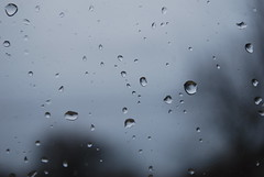 raindrops turning into teardrops (25snoopy) Tags: raindrops teardrops rainy day nature sky