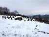 20180318-142626 (aderixon) Tags: architectureantiquity naturelandscapehill natureplanttree natureweathersnow pontypridd midglamorgan walesuk nature snow weather