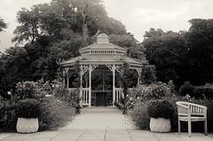 Albert's Cottage Arbour (Alex . Wendes) Tags: albertscottagehotel arbour chair trees pots plants bushes d7000 nikond7000 18105mm nikon18105 nikon18105mm
