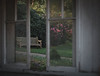 Garden view (V Photography and Art) Tags: camelia window bench light morning view throughthewindow outdoor framing