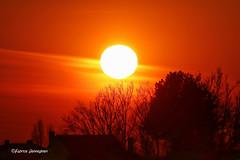 Sunset (Fabke.be) Tags: sunset sun sunny silhoue landscape nature vlaamseardennen vlaanderen ronse nukerke maarkedal fabrice henneghien explore inexplore life canon popular flickr fabke people canon7d photography belgian view