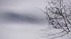 Trajectoire (Luc Marc) Tags: steannedeslacs québec hiver neige paysage sainteannedeslacs traces empreintes arbuste arbre ombre