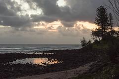 Burleigh Rockpools (armct) Tags: naturessilhouettes rockpool surf beach sand headland point sunrise stormfront storm front clouds reflection shoreline horizon norfolkpine casuarina morning goldcoast burleighheads nikon nikkor d810 700200mm