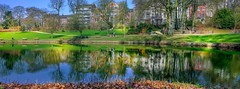 Promenade dans le Parc (ΨᗩSᗰIᘉᗴ HᗴᘉS +27 000 000 thx) Tags: réflection reflection reflexion namur hensyasmine belgium europa aaa namuroise look photo friends be wow yasminehens interest intersting eu fr greatphotographers lanamuroise fujifilmgfx50s fuji