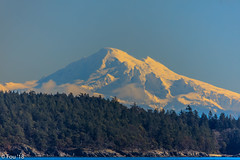 0I7A9886.jpg (Murray Foubister) Tags: bcferries mountains victoria people winter travel 2018