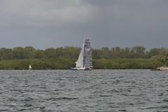 LOX_3701 (Lox Pix) Tags: australia queensland brisbanetogladstone yachtrace catamaran trimaran 2018 bossracing multihull loxpix moretonbay shorncliffe cabbagetreecreek rudder aground sailing